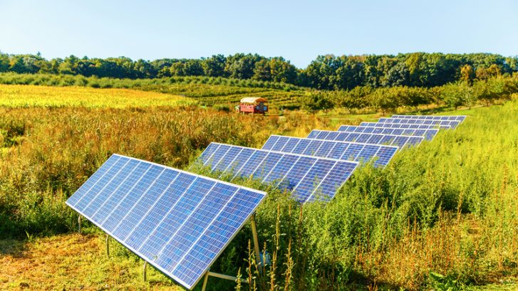 Solar Farms | ClearWorld LLC